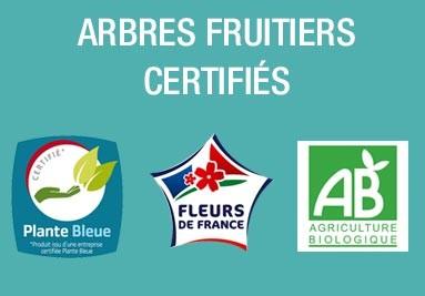 Fruitier issus de l'agriculture Biologique. Label Fleurs de France et Plantes Bleue
